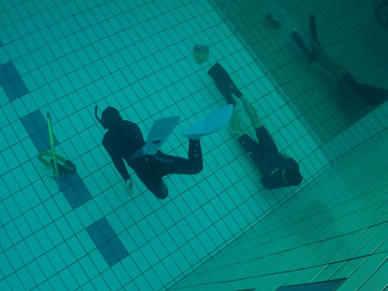 snorkel2021